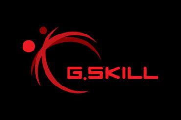 g.skill logo